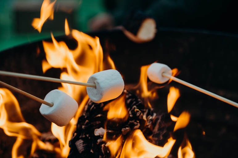 fire pit - roasting marshmallows